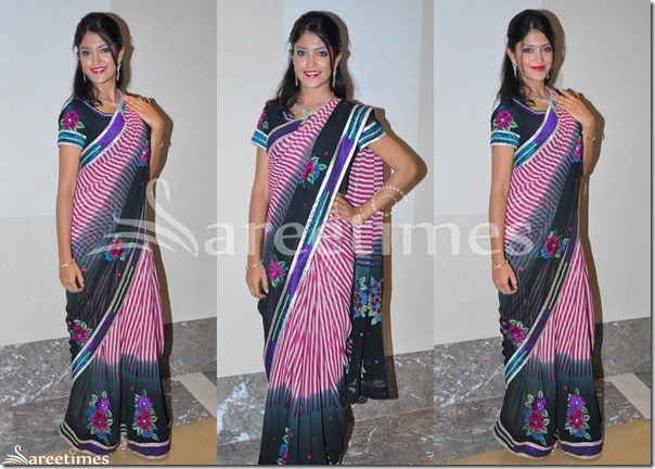 Krupali_Dual_Color_Saree