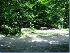 7021 Doe Lake Campground Rizzort - view from our front window