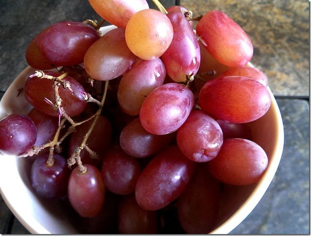 grapes-public-domain-pictures-1 (2247)