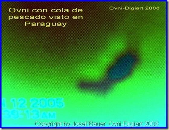 ufo fish_3