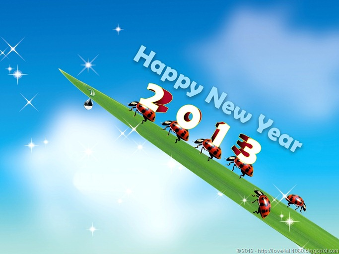 Happy-New-Year-2013-love4all1080 (16)