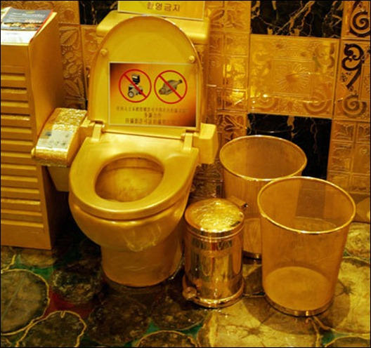 Top 6 Worlds most expensive toilets  The Indian Express