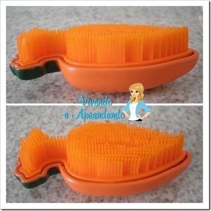 escova para higienizar frutas e lgumes1