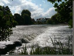 River Avon 2014 033