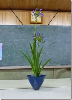 【生花・一種生け】アガパンサス
