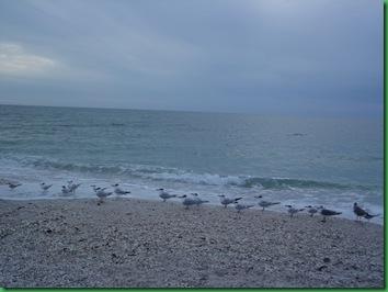 Caspersen Beach 090
