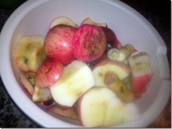 apple sauce 8