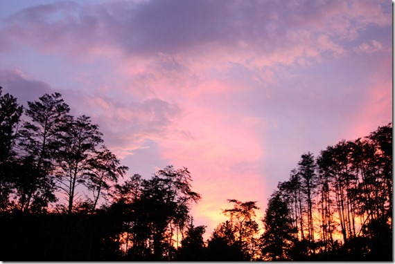 PNP sunset621-5