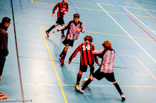 SEIZOEN 2013-2014 - WVV D4 - 18 JAN - WVV D5 - ZAALCOMPETITIE