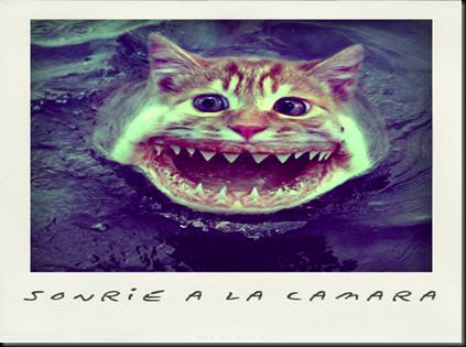insolito@Pola(20120524091110)