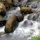 A Rushing Stream At The Spice Plantation - St. George's, Grenada