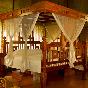 Surya Ayurveda Health Resort