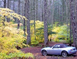 Cascade Mtns Drive2