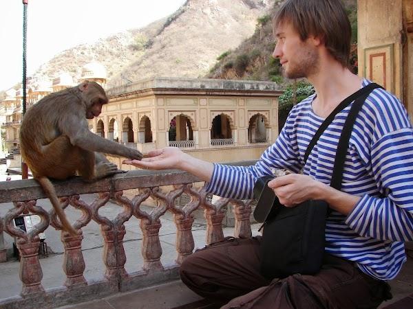Саша и обезьяна.jpg