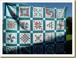 Sampler showing quilting