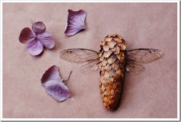 cicada hydrangea pinecone