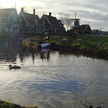 beautiful scenery at the zaanse schans in zaandam in Zaandam, Noord Holland, Netherlands