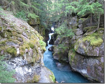 cf_gnp_waterfall_and_canyon_TrailOfTheCedars_thumb[2]