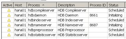 HANA processes no sapwebdisp