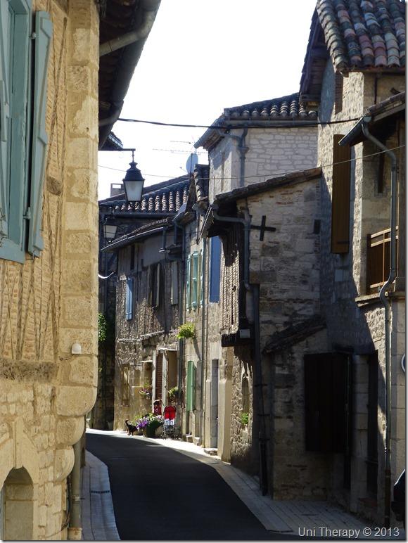 Uni Therapy: Around Montpezat-de-Quercy 2