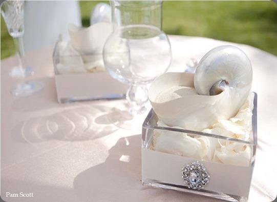 nautilus-sand-ceremony-bling-hotel-del-coronado aileen tran