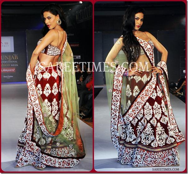 Veena_Malik_Shimmer_Saree