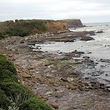 A Rocky Shoreline - Catlins, New Zealand
