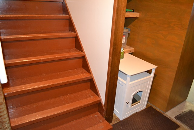 Basement Stairs and Litter Box
