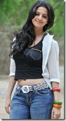 vedhika_new_stylish_pic