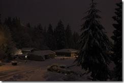 snowpocalypse  26