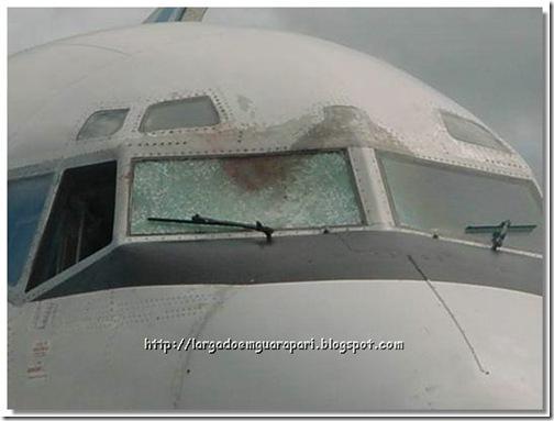 avião acidente (6)