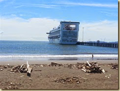 20141209_Golden Princess Puntarenas (Small)