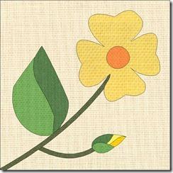 Yellow Primrose 1