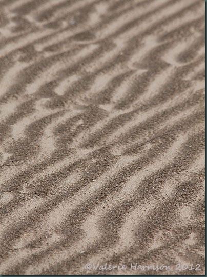 19-sand-ripples
