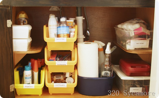 under bathroom sink organization