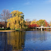 Great View of Boston Public Garden