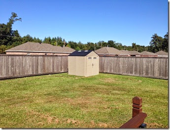 Running & Fence Staining (11)
