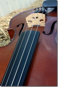 violin haybales