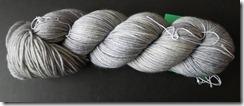 Verdant Gryphon - Grey Hairstreak - Bugga