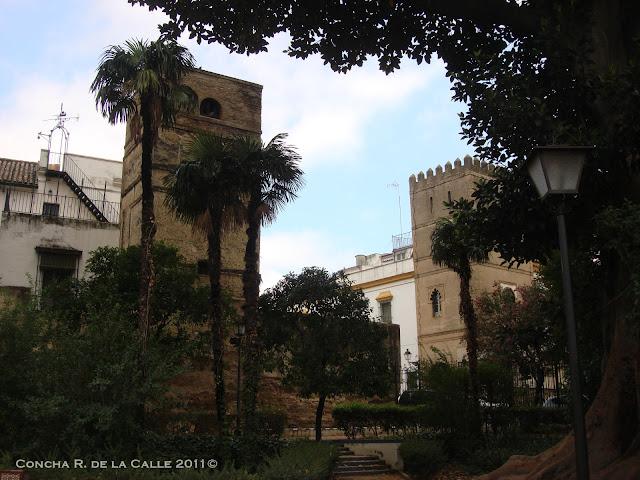 Sevilla - jardines de Murillo - 3-9-11 (10).JPG