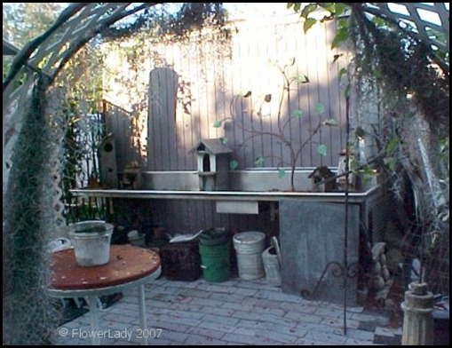 12-03-potting-area