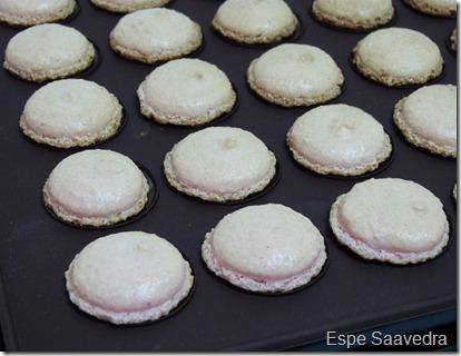 macarons espe saavedra (9)