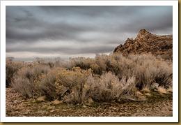 - Antelope Island_D7K3920 February 18, 2012 NIKON D7000