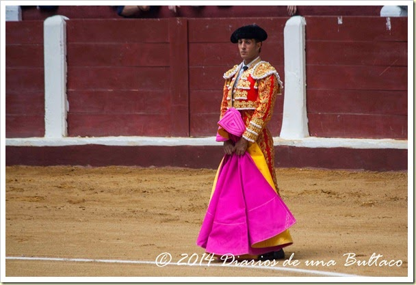 Toros 2014 (2)-9