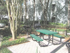 Florida 3.2013 Marriott Cypress Harbour BBQ area near room1