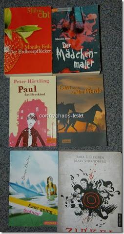 Jugendbuchwanderkiste