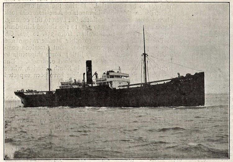 Vapor DELFINA. Foto Frank & Sons., de South Shields. De la web Wrecksite. Seguramente de alguna publicación tipo The Engineering.jpg