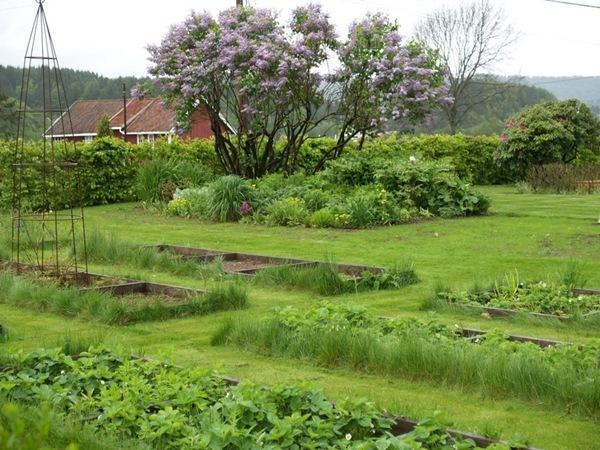 2011-05-28 Hagen på Møll (53)