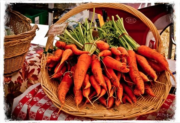 Carrots sm