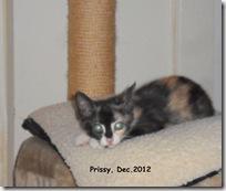 Prissy-Dec.2012